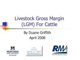 Livestock Gross Margin (LGM) For Cattle By Duane Griffith April 2008 Risk  Management Agency. - ppt download