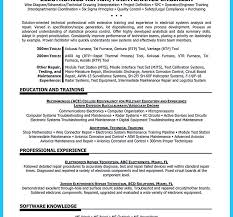 Examples Of Good Resumes Excellent Name Your Resume Examples Best Templates Template Online 49