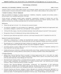 Technical Program Manager Resume Samples Unique It Program Manager ...