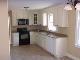 Audacious Small L Shaped Kitchen