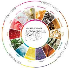 Michael Edwards Perfume Fragrance Wheel Download