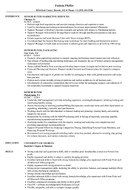 Buyer Sample Resume Senior Buyer Resume Samples Velvet Jobs 16