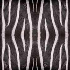 Oriental Abstract Seamless Wallpaper Tiles Zebra Stripes Pattern