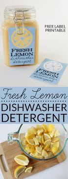 How Do I Clean My Dishwasher Best 25 Cleaning Dishwasher Vinegar Ideas On Pinterest Cleaning