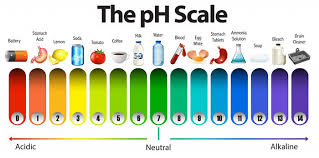Ph Level Of Water A To Z Ph Guide How To Test At Home 2019