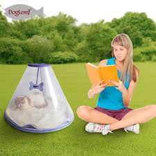 soft pet cave transpa dog cat igloo house with removable cushion bed house mat sleep outdoor
