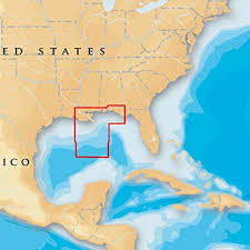 Free Fishing Charts Amazon Com Navionics Platinum Plus Gulf Of Mexico Central