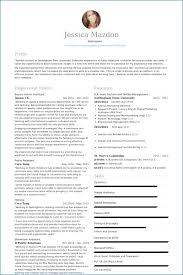 Combination Resume Examples Resume Example