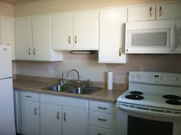 Painted White Kitchen Cabinets Paint Kitchen Cabinets Gloss Quicuacom