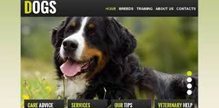 How To Make A Dog Website Simple Tips For Breeders