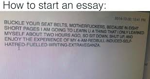 essay perfectly captures how we all feel when writing essays a screen capture