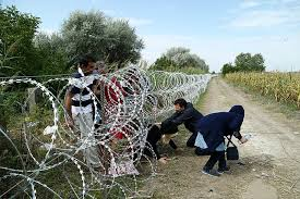 a point legal plan to stop illegal immigration  pic illegal immigrants at barb wire