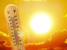 ग्लोबल वॉर्मिंगमुळे उष्ण वर्षांच्या नोंदीत वाढ; देशभरात १ हजार ५६२ जणांचा  मृत्यू - Marathi News | Global warming increases warmer summer records; 5  thousand 5 deaths across the country ...