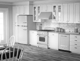Wood Floors For Kitchens Kitchen Modern White Kitchens With Dark Wood Floors Fireplace