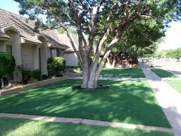 synthetic grass venice gardens florida landscaping business small front yard landscaping