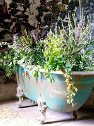 25 pretty container garden ideas with
