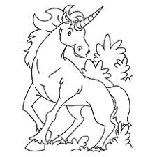 Crafty Design Unicorn Coloring Pages Free For Adults Printable Print