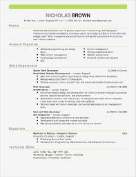 Resume Templates For No Job Experience Simple No Experience Resume