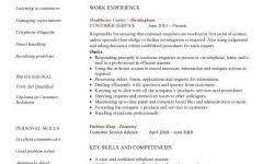 customer service skills resume examples - Resume Summary Examples Customer  Service