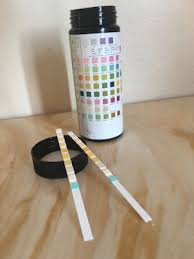 Multistix 10 Sg Results Chart Home Urinalysis Test Strip Color Chart And Explanations