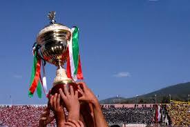 Image result for كأس الجزائر