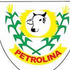 imagem de Petrolina de Goiás Goiás n-12