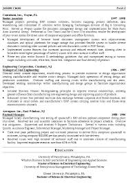 It Director Resume Senior It Manager Example Release Captures Or