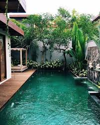 Swimming Pool Design: Unique Narrow Pool With Desert Plants - Backyard Pools