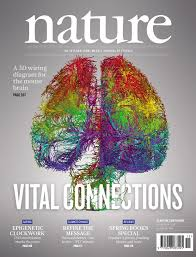 under the covers nature revealed 10 2014 of schemes a 3d wiring diagram for the mouse brain