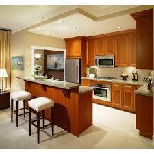 European Style Kitchen Cabinets Kitchen Elegant European Style Kitchen Design Ideas With Frosted