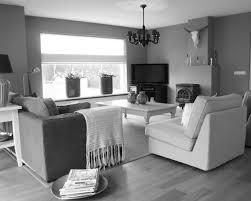Light Colored Living Rooms Light Gray Living Room Pinterest Bluish Gray Paint Layout Light