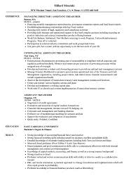 ... Assistant Treasurer Resume Sample as Image file
