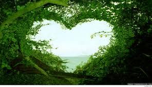 Beautiful Love Nature Wallpaper Hd ...
