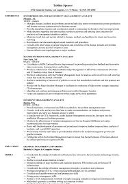Incident Management Resume Example Incident Management Analyst Resume Samples Velvet Jobs 11