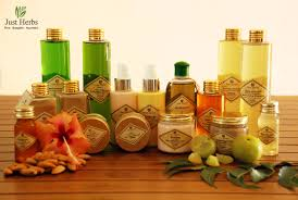 just herbs dr neena chopra s entrepreneurial endeavor with organic ayurvedic beauty and spa s