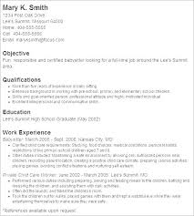 Resume With Objectives Resume Web
