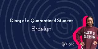 diary of a quarantined student braelyn