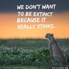 catchy save animals wildlife conservation slogans in english we don t want to be extinct because it really stinks