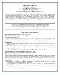 Sample Summary Statement Resume Sample Resume Summary Statements Sample Summary Statement Resume
