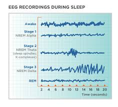 Ideal Sleep Cycle Chart Stages Of Sleep Non Rem And Rem Sleep Cycles Tuck Sleep