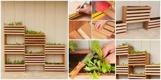 how to make a modern space saving vertical vegetable garden wall