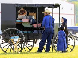 best amish images amish country amish culture  the amish 10 things you might not know fascinating facts about the lives of these americans also known as the pennsylvania dutch