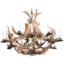 european fallow deer antler chandelier by stan hughes for guinevere for