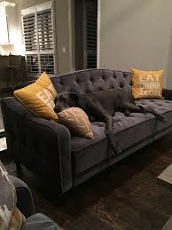 Ideas Futon Living Room Sets Pictures Living Room Paints Living Futon In Living Room