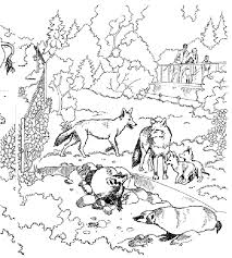Small Picture Coloring Pages Of Tundra Animals Coloring Pages