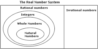 Real Numbers Chart Worksheet Definition And Examples Real Numbers Define Real Numbers