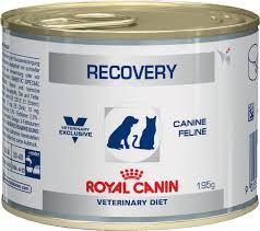 "<b>Консервы</b> для собак и кошек <b>Royal Canin</b> ""Recovery"", в период ..."