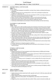Big Four Resume Sample Internal Audit Manager Resume Samples Velvet Jobs 59