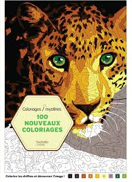 100 Nouveaux Coloriages Myst Res Amazon Fr J R My Mariez Livres