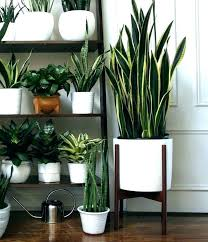 Home Inspiration Design Likeable Large Indoor Planters Extra Flower Pots  Plant Ceramic Intended For From Attractive
